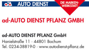 160606_Banderole_Autodienst_50_30_4c.indd